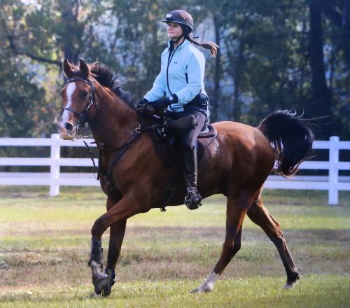 Ištvermės jojimo meistrė A. Zabavska – apie čempionės titulo kainą ir pasiruošimą Pasaulio žirgų sporto žaidynėms