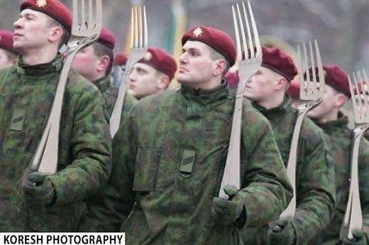 Kodėl Lietuvos kariuomenė klastoja dokumentus?