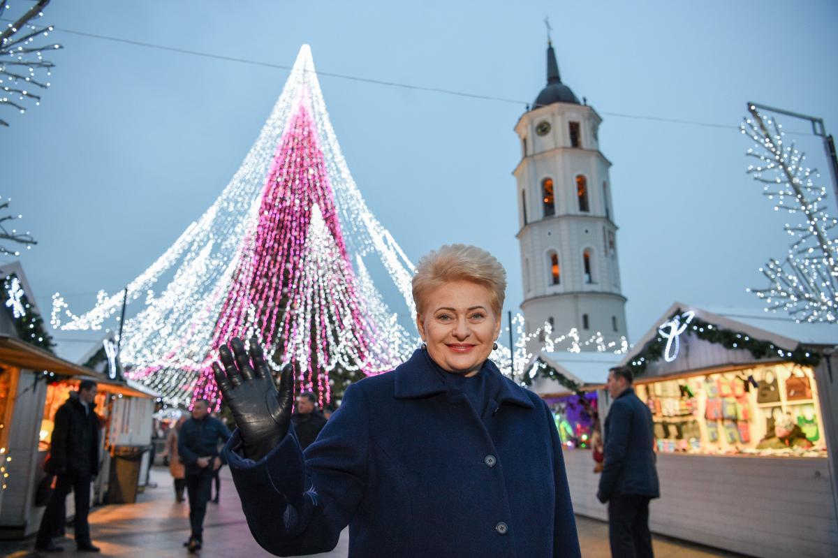 STT, prokurorai ir teismai toliau dengia D.Grybauskaitės įtariamus nusikaltimus