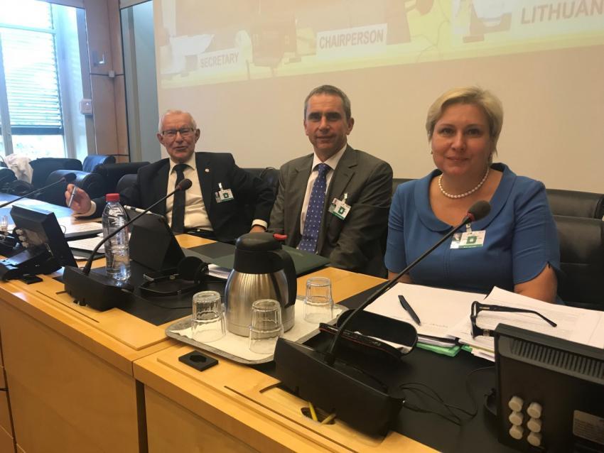 JT Žmogaus teisių komiteto posėdyje Lietuvos delegacija vėl buvo nepakaltinama