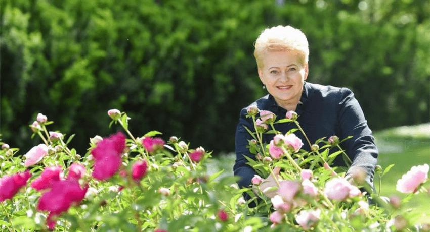Už valstybės pinigus jau parašyta monografija apie D.Grybauskaitę, sukurtas ir dokumentinis filmas