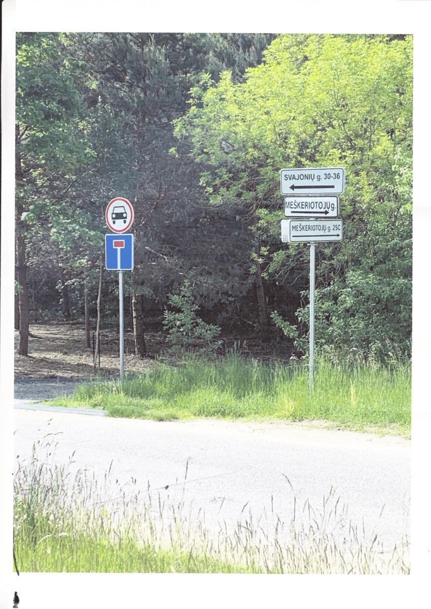 Kaip Vilniaus tarybos narys Aidas Gedvilas valstybinį kelią privatizavo?