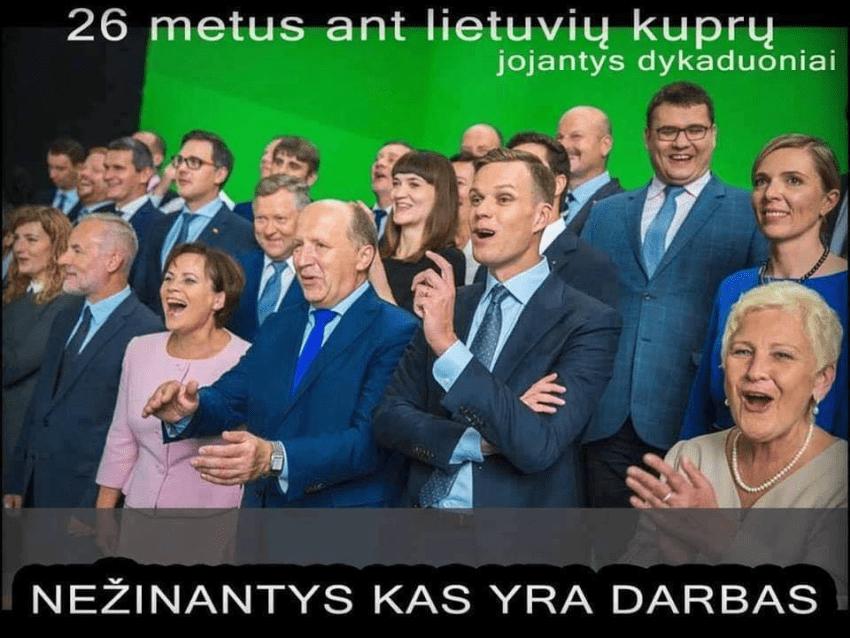 LLRA-KŠS prašo teismą pripažinti Seimo rinkimus Panerių-Grigiškių rinkimų apygardoje negaliojančiais