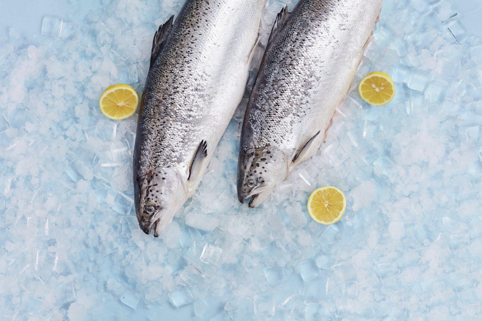 Nuo tvenkinio iki vitrinos – trumpiau nei para: žuvininkė pataria, kaip atpažinti šviežią žuvį