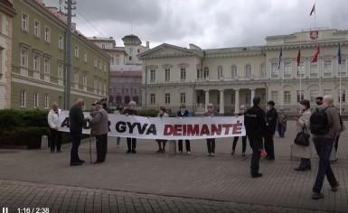 """Vinco Kubiliaus video reportažas iš kasmėnesinės 17-osios dienos akcijos """"Tie-SOS!"""""""