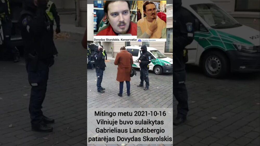 Mitingo metu 10-16 Vilniuje buvo sulaikytas Gabrieliaus Landsbergio patarėjas Dovydas Skarolskis